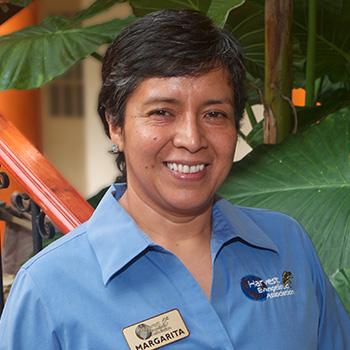 Margarita Ibarra